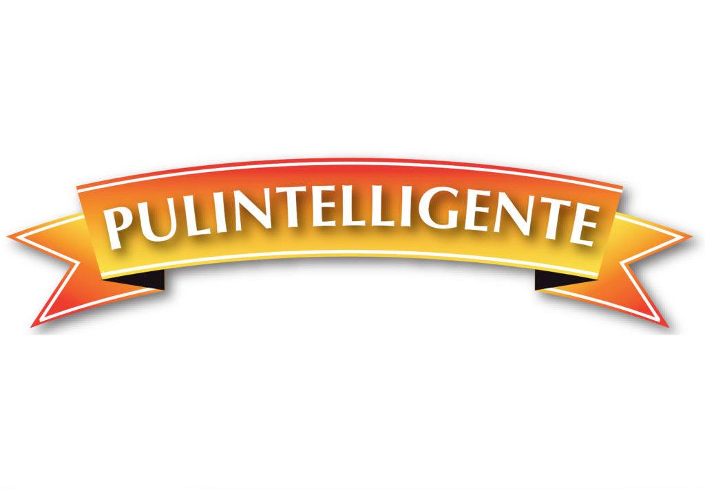 Pulintelligente logo